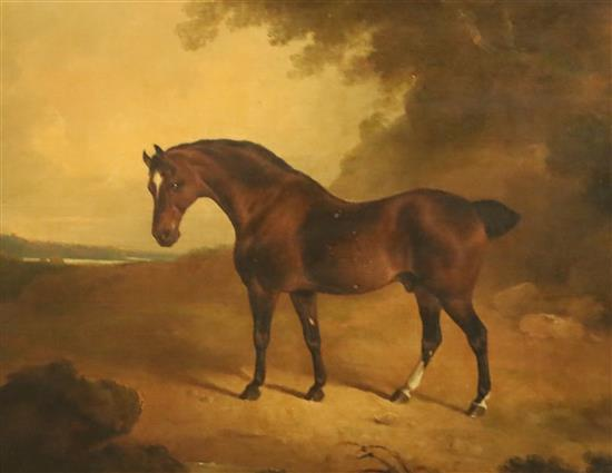 Early 19th century English School Brown horse in a landscape 18 x 23.25in.