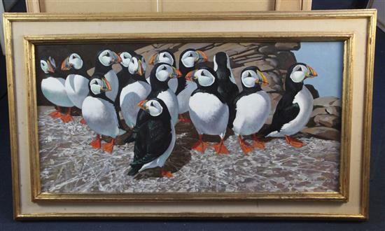 § Keith Shackleton (1923-2015) Puffins on the Great Smith: Isles of Scilly 17.5 x 36in.