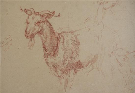 William Shackleton (1872-1933) Figure studies, early drawings, drapery and farm animals, Largest 22 x 15in. unframed.
