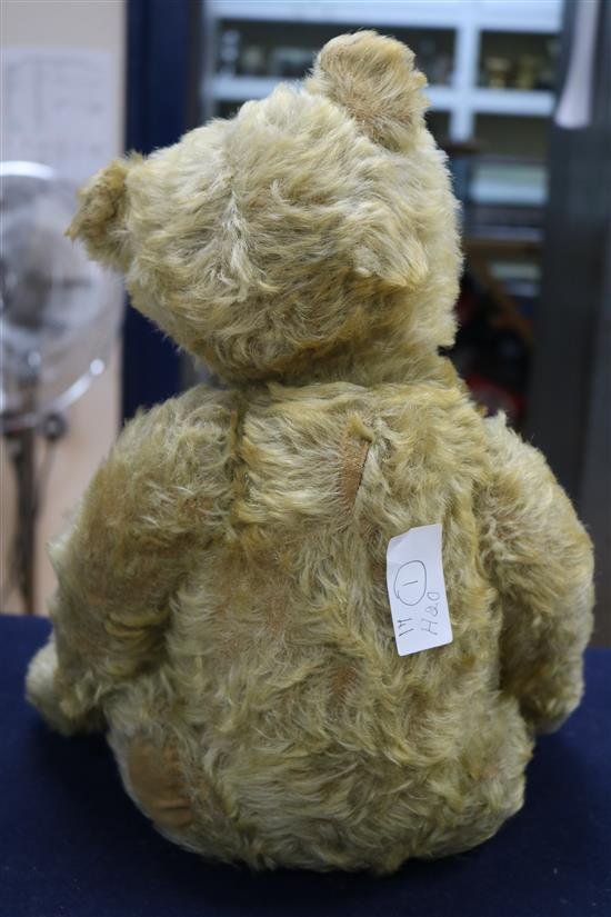 A Steiff centre seam bear, c.1908, replaced paw pads, hair loss to body, arms and legs, 20in.